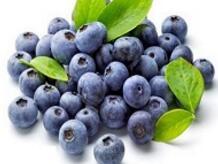 蓝莓冻果(挂牌)---白盘